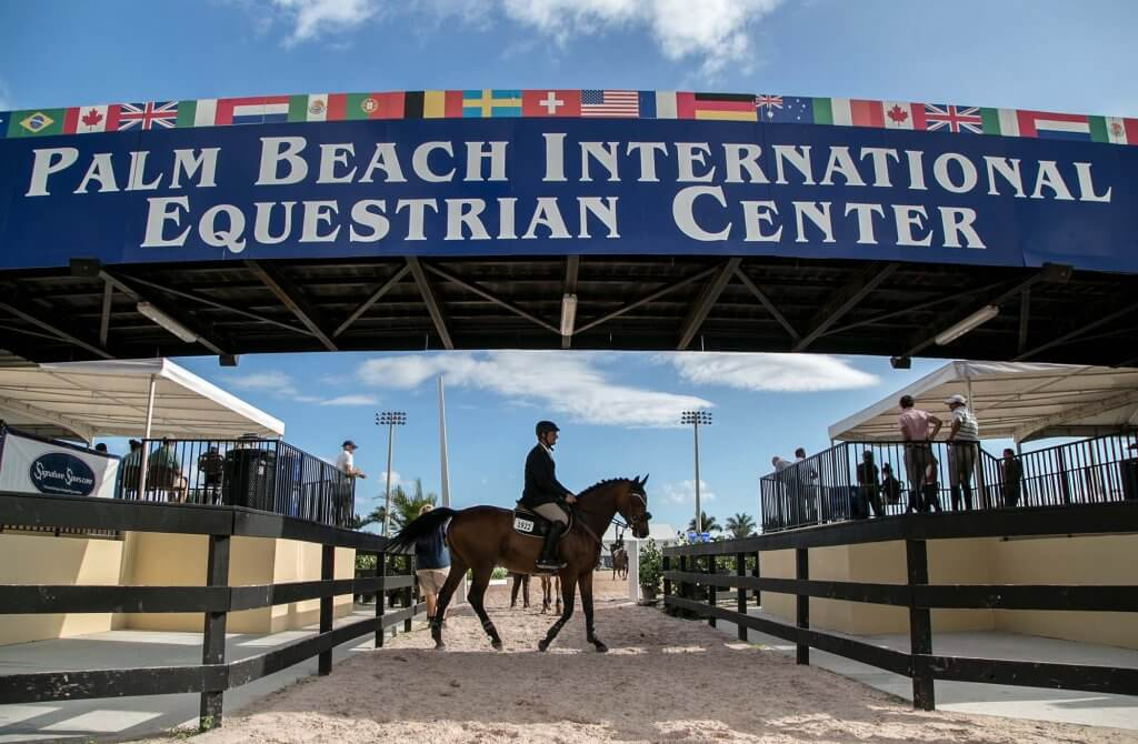 British Showjumping's Team NAF announced for Wellington CSIO4* FEI Nations Cup