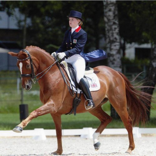 Olivia Oakeley : International Dressage Rider & Fitness Coach