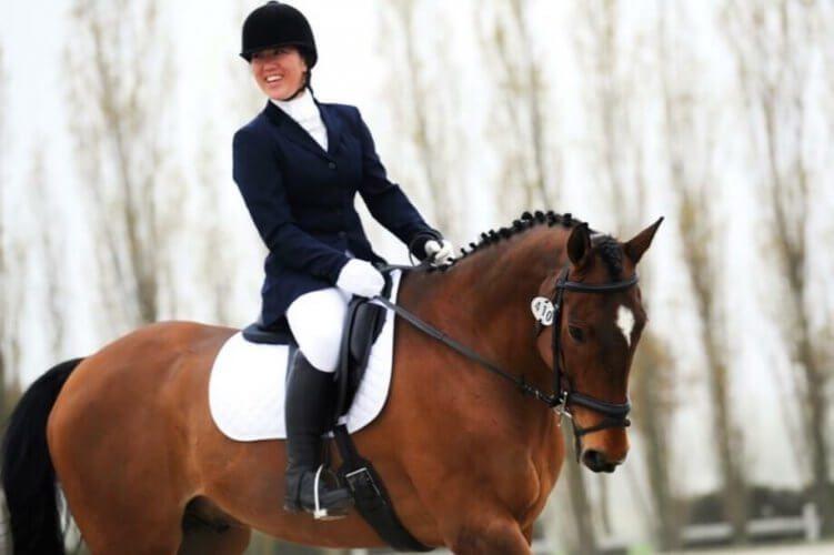 International Para Horse Put Down Following Violent Attack on RDA Centre