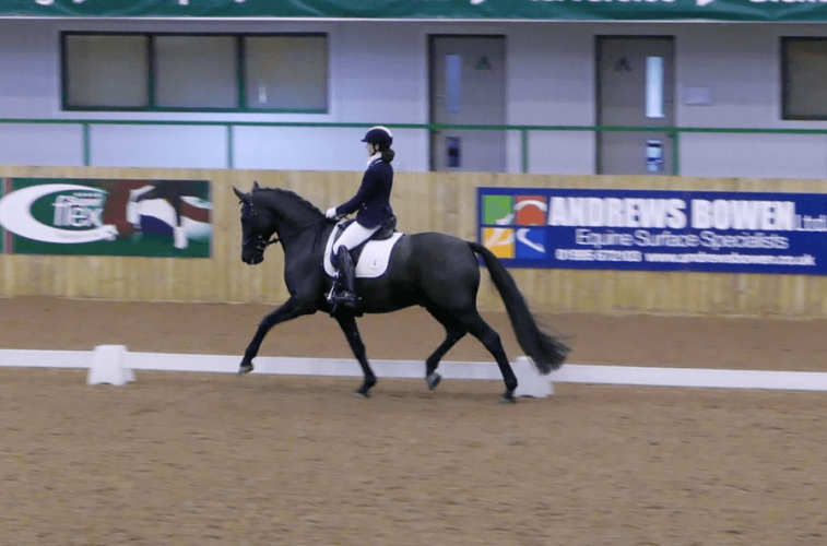 Advanced Dressage rider Holly Norris : 'My Road to Ruin' Chapter 11