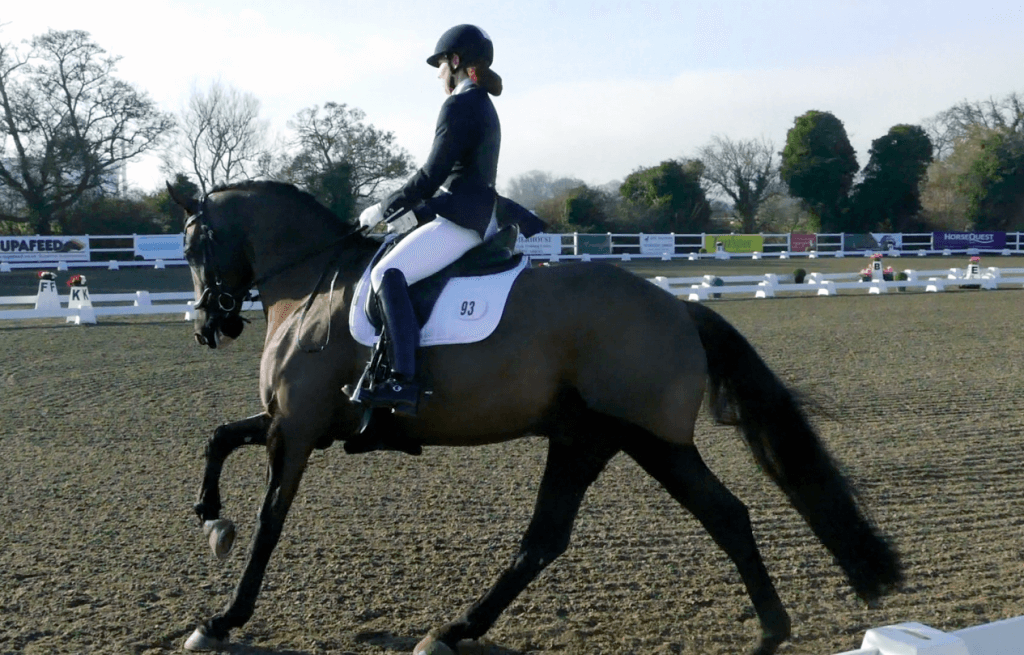 Advanced Dressage rider Holly Norris : 'My Road to Ruin' Chapter 14