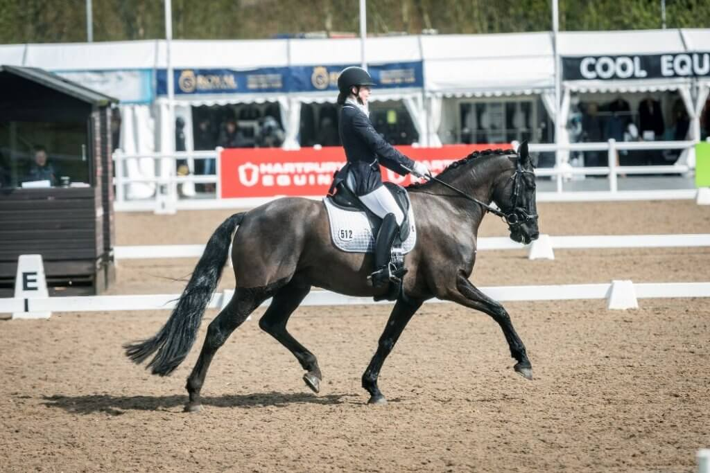 Advanced Dressage rider Holly Norris: 'My Road to Ruin' Chapter 15