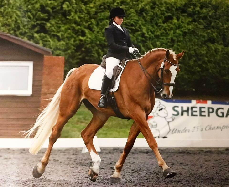 Zara and Leggy at their first Dressage Senior Inter Regionals – Watch Day Two …..